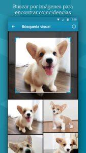 Microsoft Bing 4
