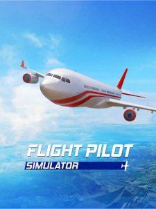Flight Pilot Simulator 3D 5