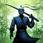 Ninja warrior