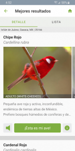 Merlin Bird ID Por Cornell Lab 5