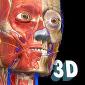 Anatomy Learning