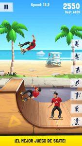 Flip Skater 1