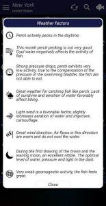 Fishing forecast 4