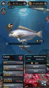 Anzuelo de Pescar 4