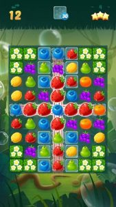 Sweet Fruit Candy 3